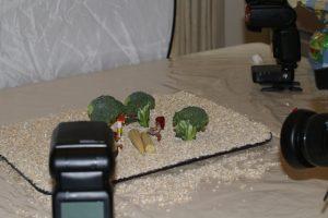 Food Art Set up